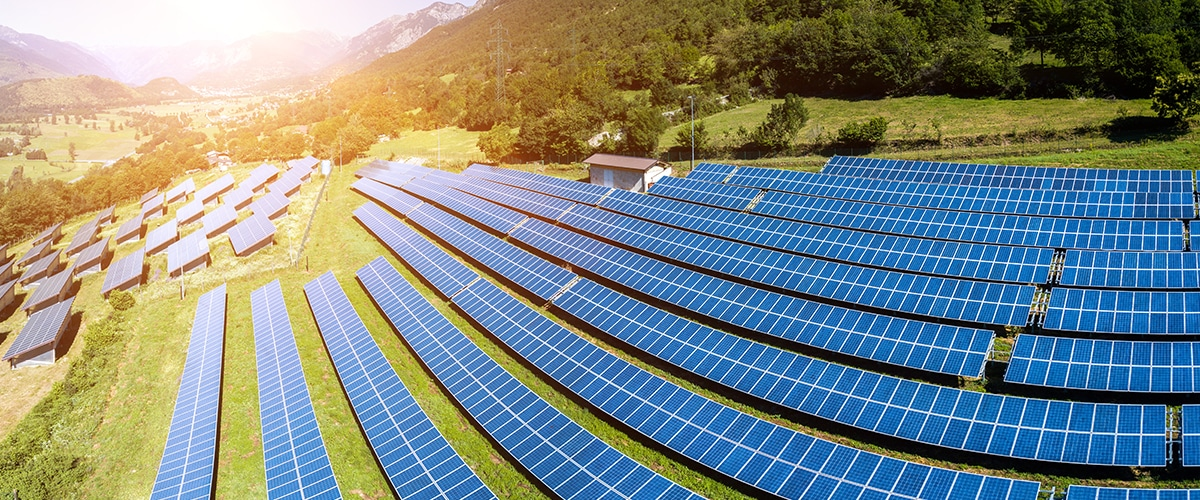 Invest in renewable energy resources